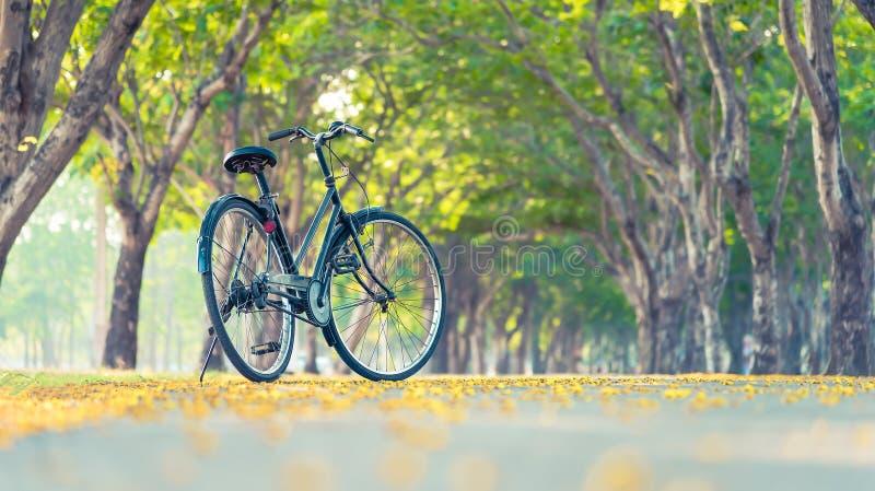 Винтажный велосипед стоковое изображение rf
