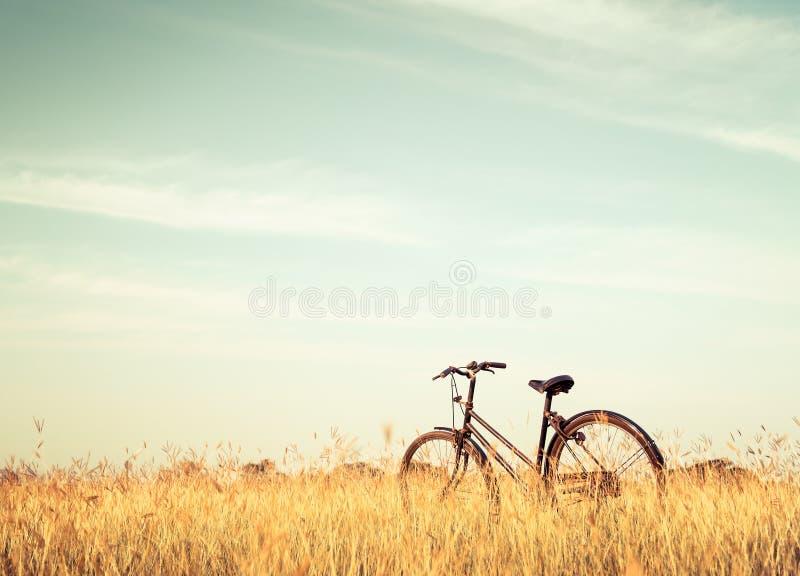 Винтажный велосипед стоковые изображения rf