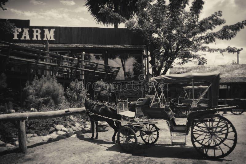 Винтажный деревянный экипаж в ферме стоковое изображение