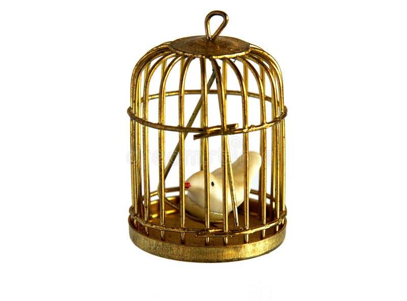 Винтажный золотой birdcage стоковые изображения rf