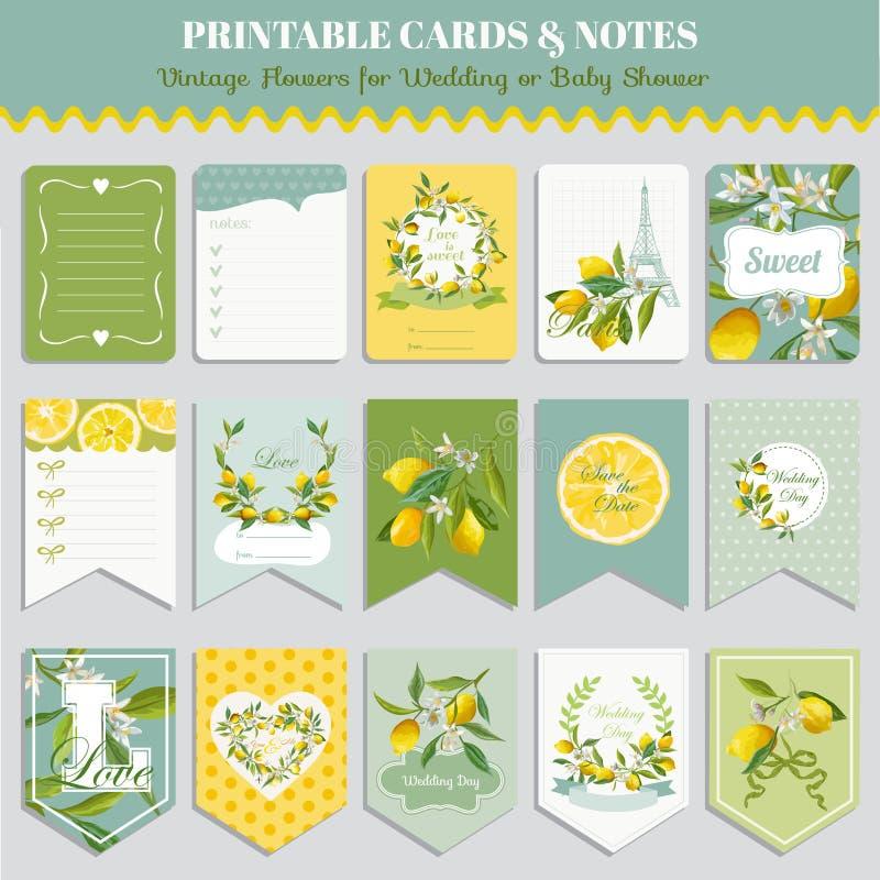 Винтажный лимон цветет комплект карточки День рождения, свадьба, детский душ иллюстрация вектора