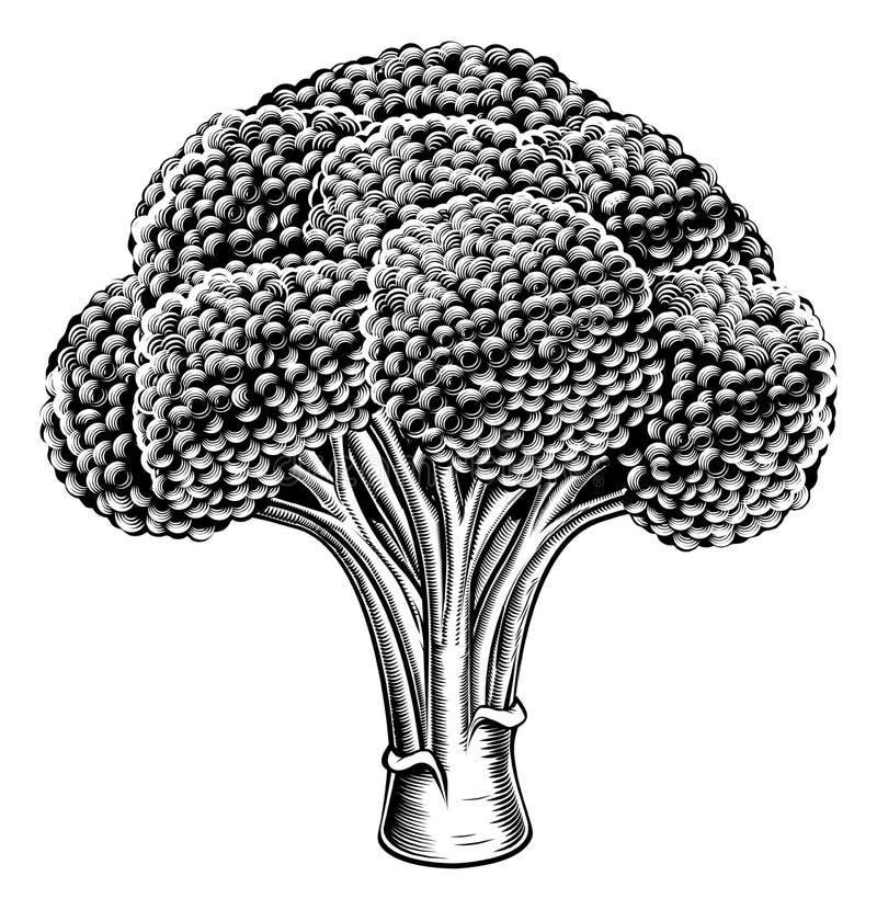 Винтажный ретро брокколи woodcut бесплатная иллюстрация