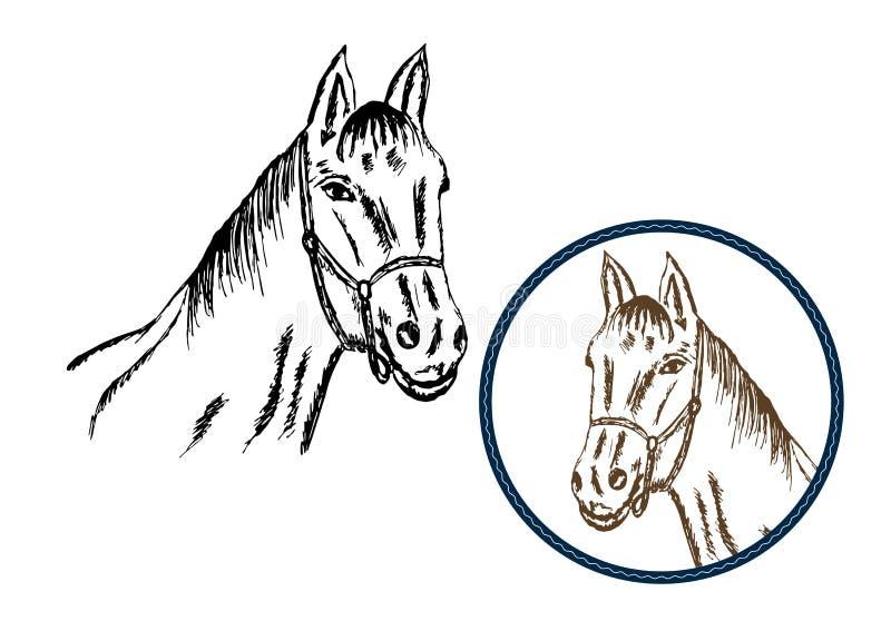 Винтажный рисуя вектор лошади Черные и коричневые цвета иллюстрация вектора