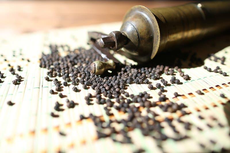 Винтажный ручной точильщик перца стоковое изображение rf