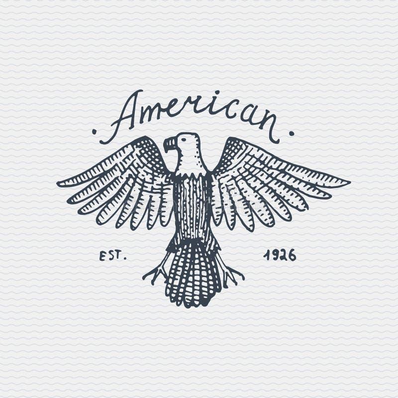 Винтажный старый логотип или значок, стиль ярлыка выгравированный и опытным человеком нарисованный с одичалым белоголовым орланом иллюстрация штока