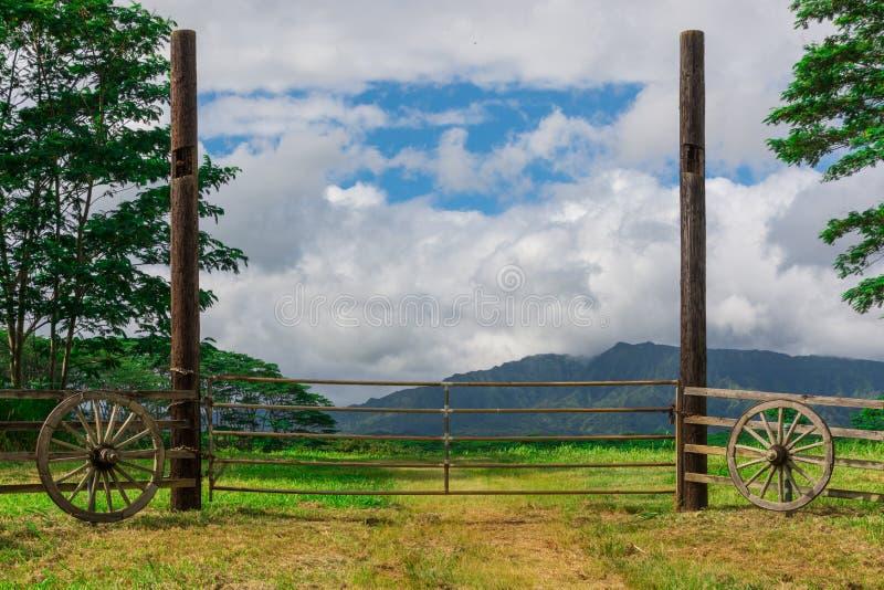 Винтажный строб к полю с горами в расстоянии стоковые изображения