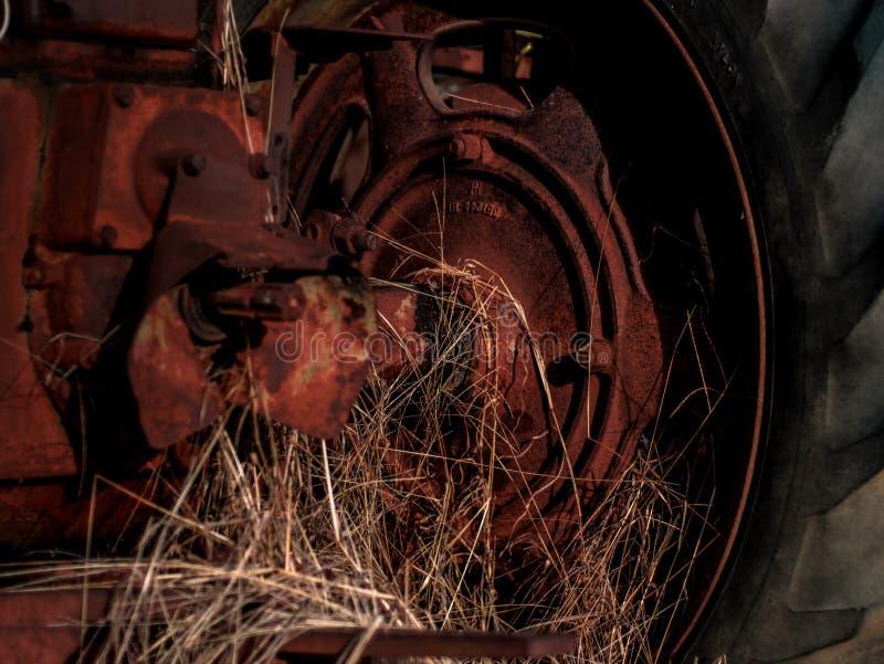 Винтажный трактор сидя в амбаре стоковые фотографии rf