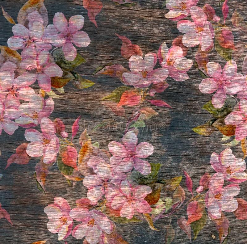 Винтажный цветочный узор - розовые цветки, старая деревянная текстура акварель стоковые изображения