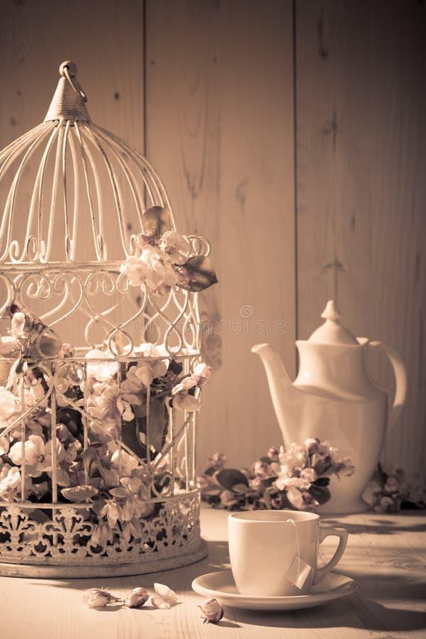 Винтажный Birdcage стоковое фото