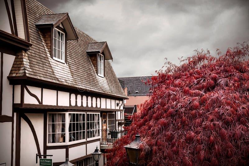 Винтажный Bookstore с красным деревом в пригородах острова Виктория, Канады стоковые фото