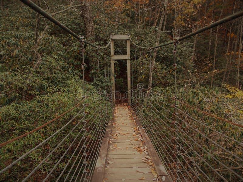 Винтажный Footbridge стоковые фотографии rf