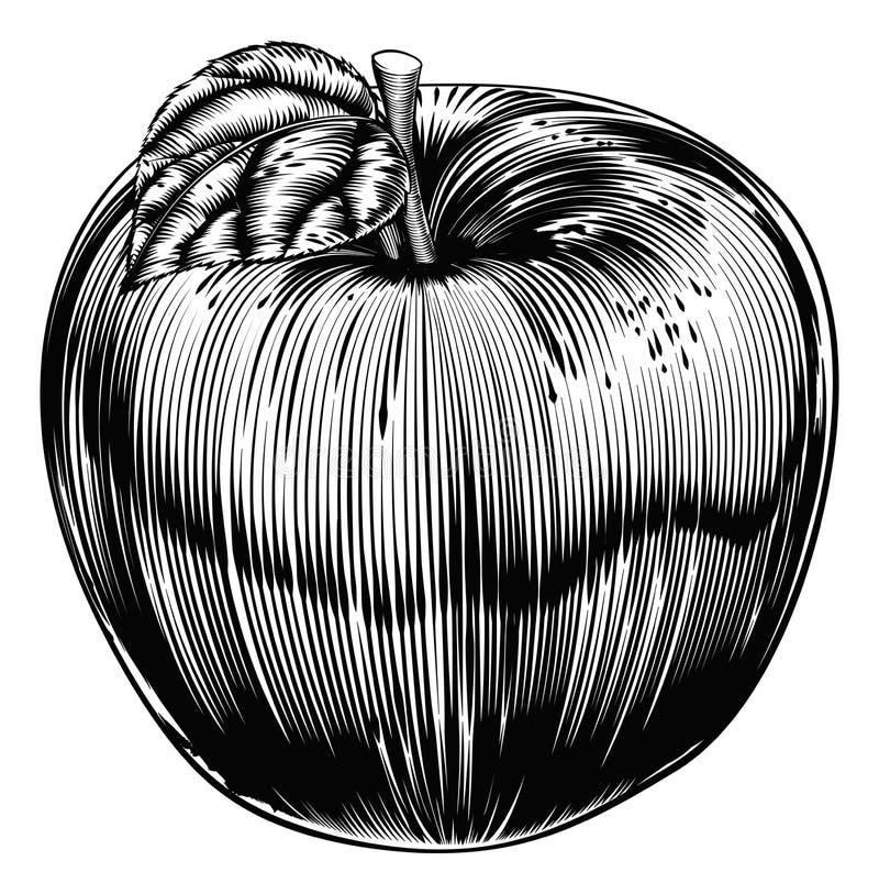 Винтажный Woodcut Яблоко иллюстрация вектора