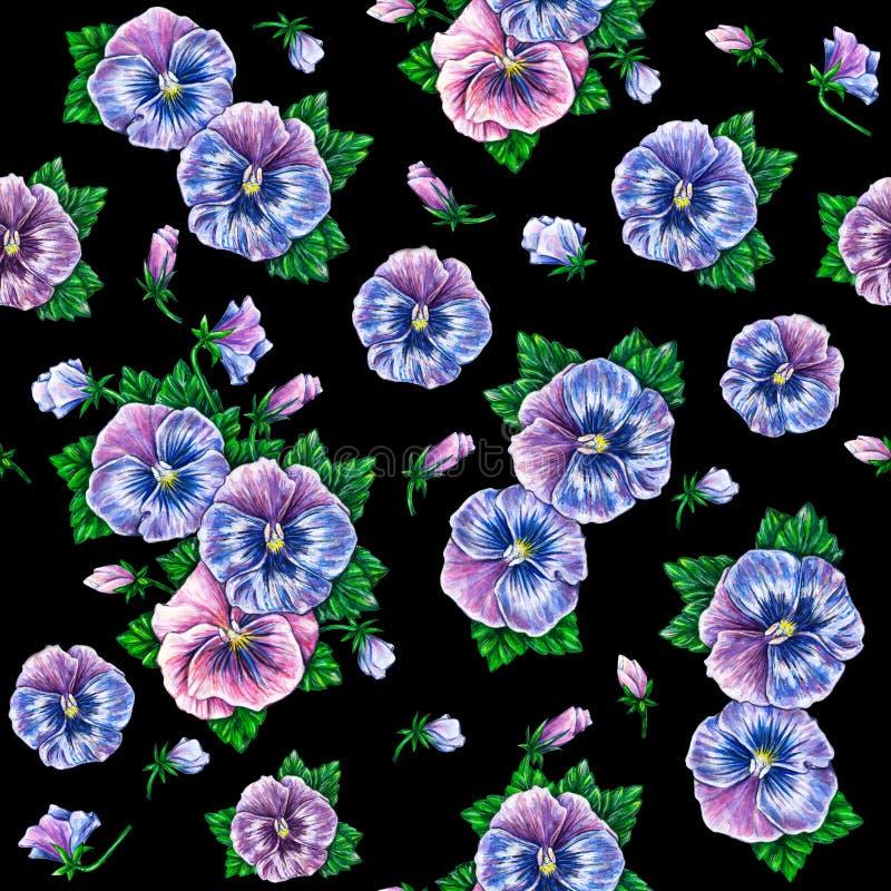Виола tricolor изолировано на черной предпосылке Цветки pansies акварели красочные рисуя для дизайна иллюстрация штока