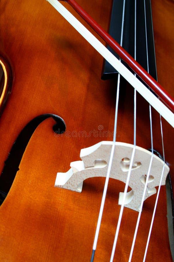 виолончель здравствулте! стоковые изображения rf