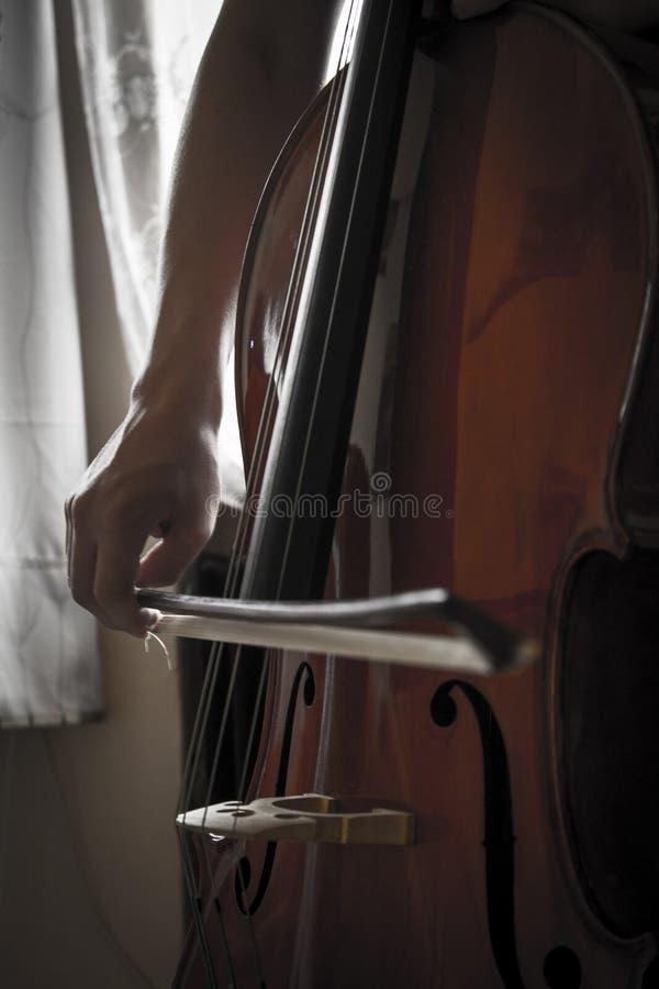 виолончель стоковое фото rf