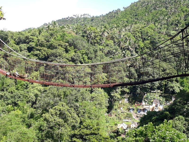 висеть моста стоковое фото