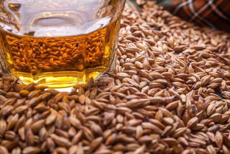 Виски и зерна стоковые фотографии rf