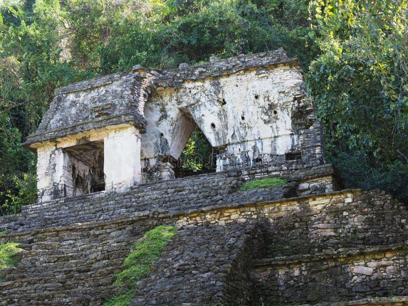 Висок на каменистой пирамиде на старом майяском национальном парке города Palenque на положении на Мексике, ландшафте Чьяпаса джу стоковое фото rf