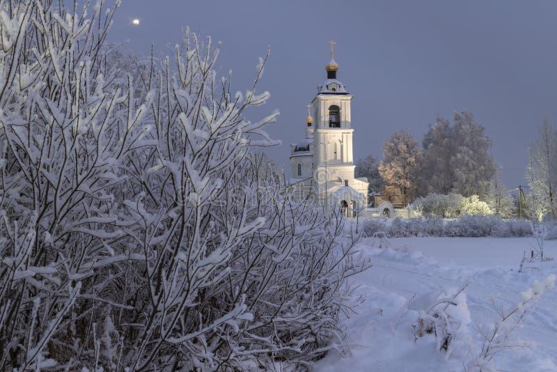 Висок, собор, крест, ортодоксальность, значки, купол, зима, снег стоковая фотография