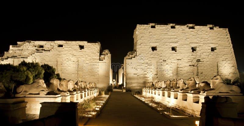 Висок Karnak в Луксор на ноче стоковые фотографии rf