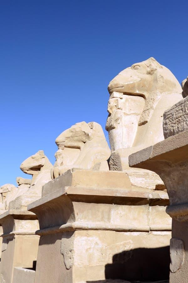 Висок Karnak, Луксор, Египет. стоковые фото