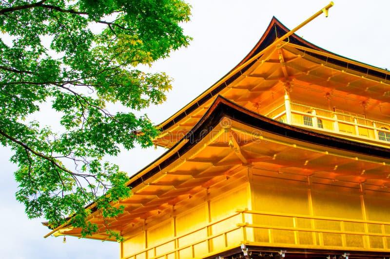 Висок Kinkaku-ji золотого павильона и дерева стоковое фото rf