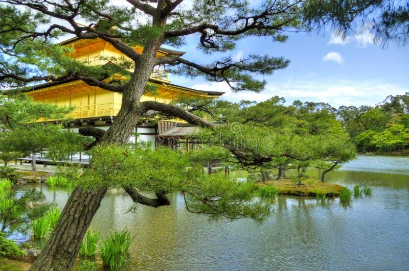 Висок Kinkaku-ji золотой, Киото стоковая фотография rf