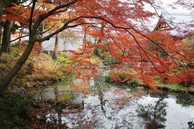 Висок Konkai Komyoji сада Дзэн Autam стоковая фотография