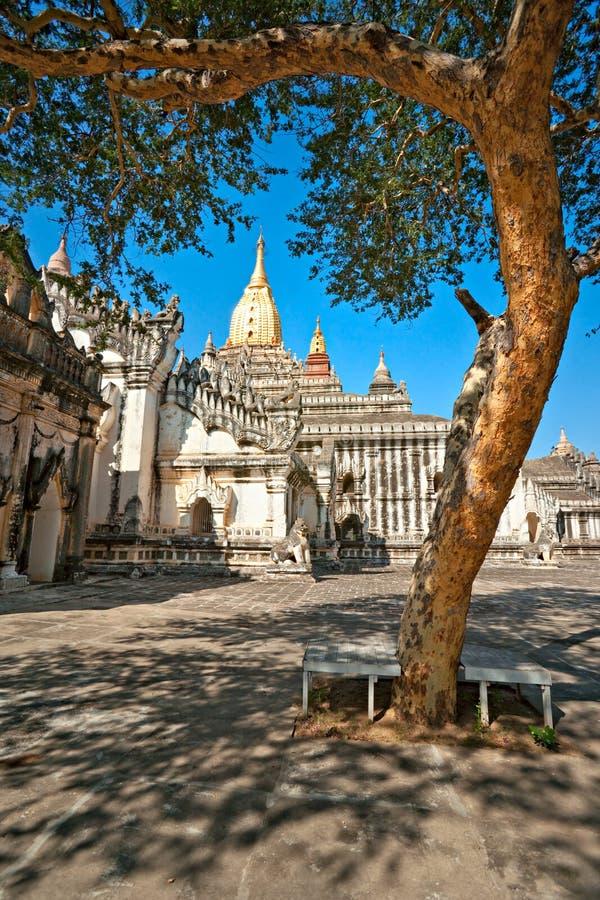 висок myanmar ananda bagan стоковые изображения