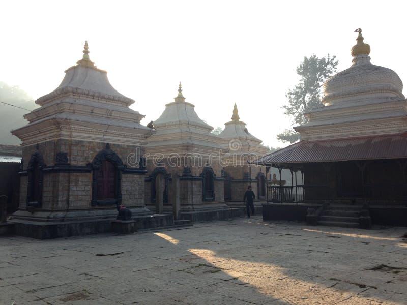 Висок Pashupatinath в Катманду стоковые фотографии rf