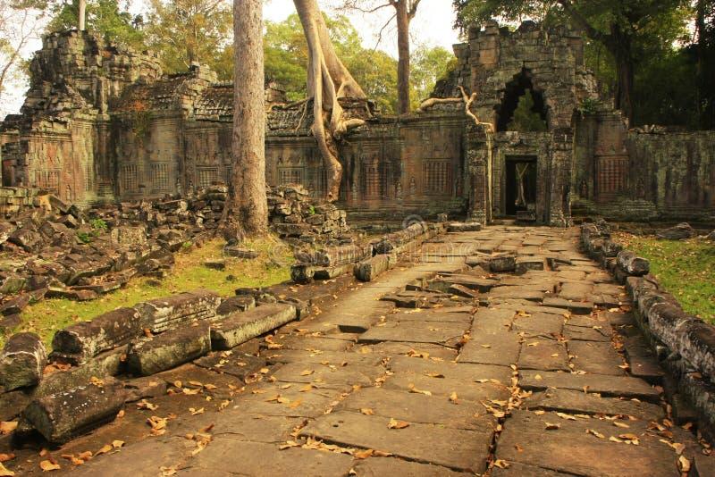 Висок Preah Khan, зона Angkor, Siem Reap, Камбоджа стоковая фотография