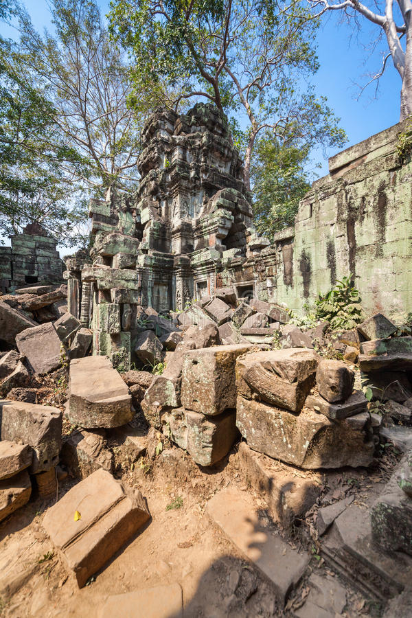 Висок Prohm животиков на Angkor Wat, Siem Reap, Камбодже. стоковые изображения