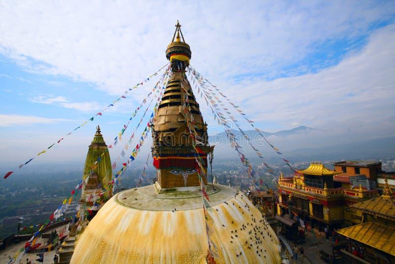 висок swayambhunath Непала обезьяны стоковые фотографии rf