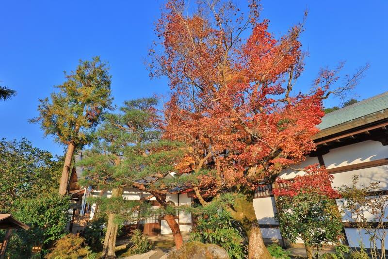 Висок Zuiganzan Enkouji на Sakyo Ku, Киото стоковое изображение
