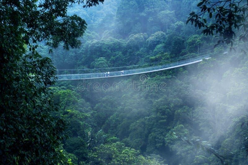 Висячий мост Situ Gunung на туманном утре стоковые изображения