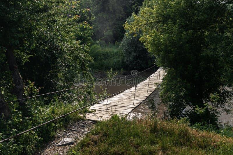 Вися мост над рекой в середине растительности предусматриван с солнечным светом стоковые изображения rf