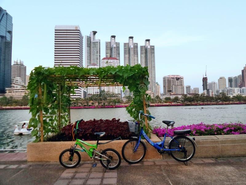 Вися огород в разбивочном общественном парке города стоковые фотографии rf