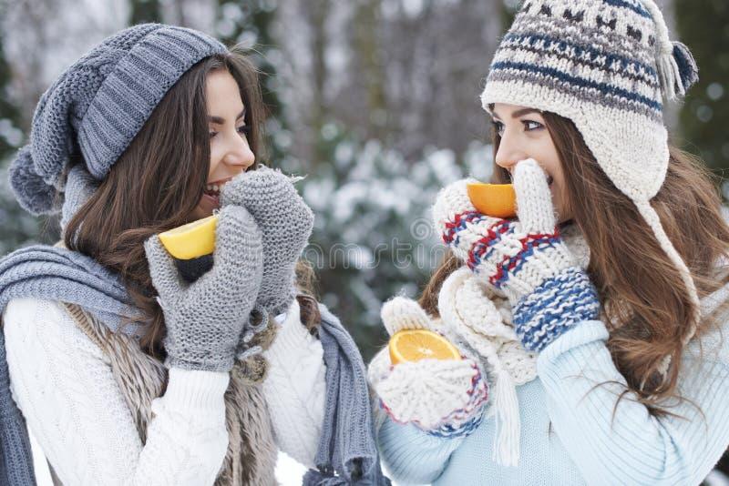 Витамины в зиме стоковое изображение