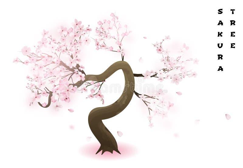 Вишневое дерево Реалистический розовый цвести японец Сакура весны также вектор иллюстрации притяжки corel иллюстрация вектора