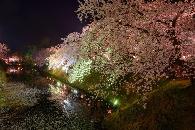 Вишневые цвета и замок Hirosaki стоковые фотографии rf