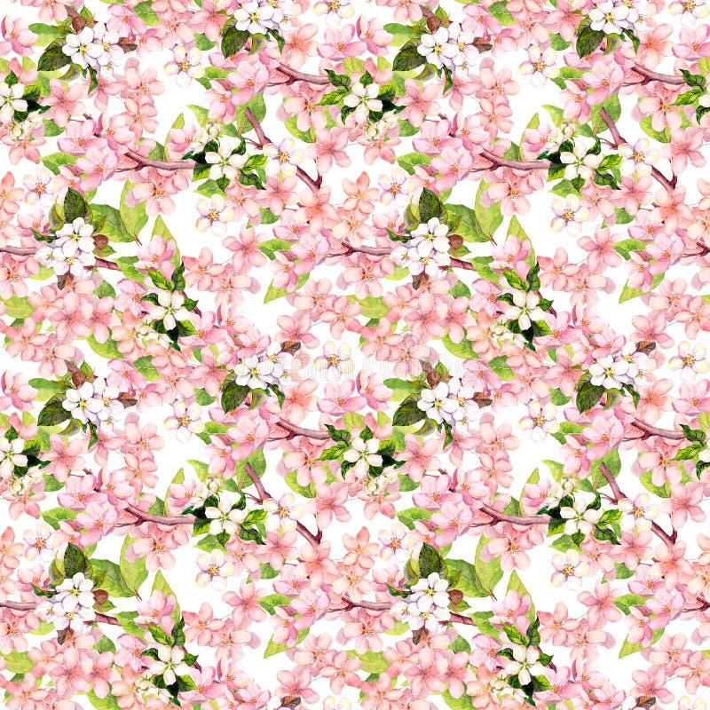 Вишневый цвет - яблоко, цветки Сакуры флористическая картина безшовная акварель стоковая фотография