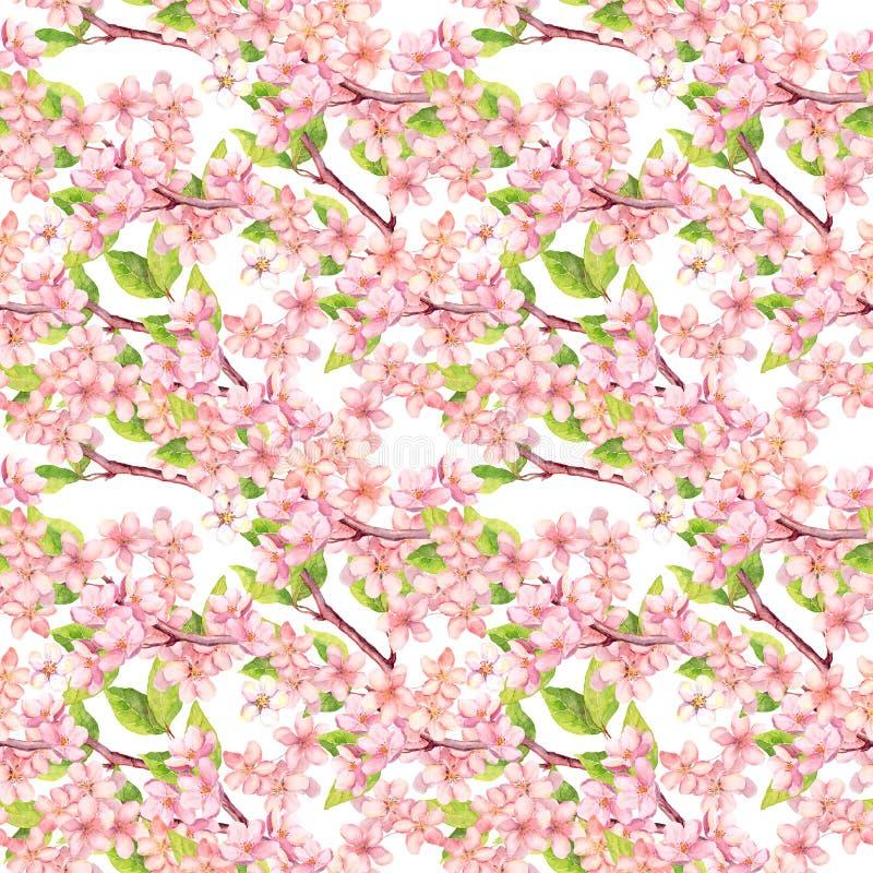 Вишневый цвет - яблоко, цветки Сакуры флористическая картина безшовная акварель бесплатная иллюстрация