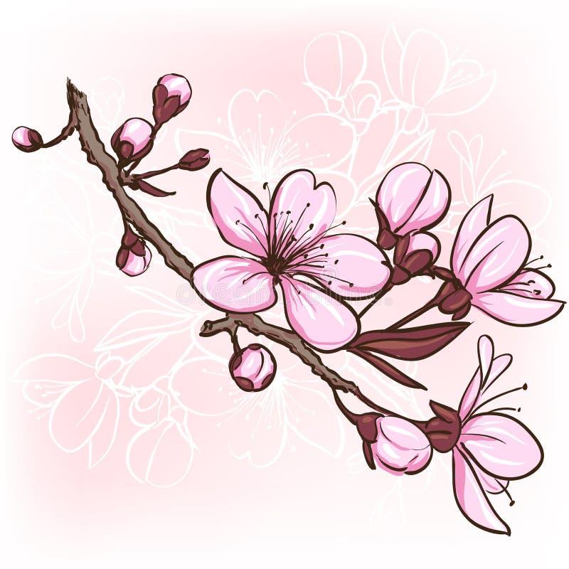 Вишневый цвет иллюстрация штока