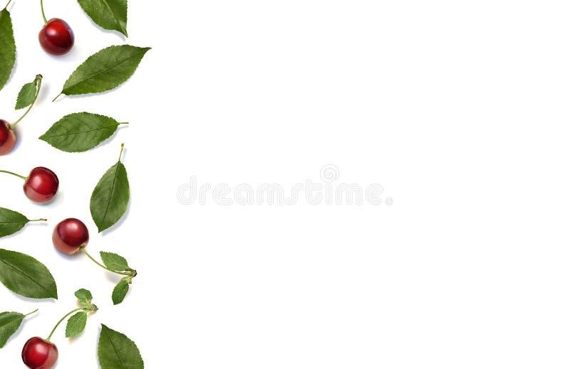 Вишни Граница с красными зрелыми ягодами и листьями вишни на белой предпосылке Плоское положение, взгляд сверху иллюстрация штока