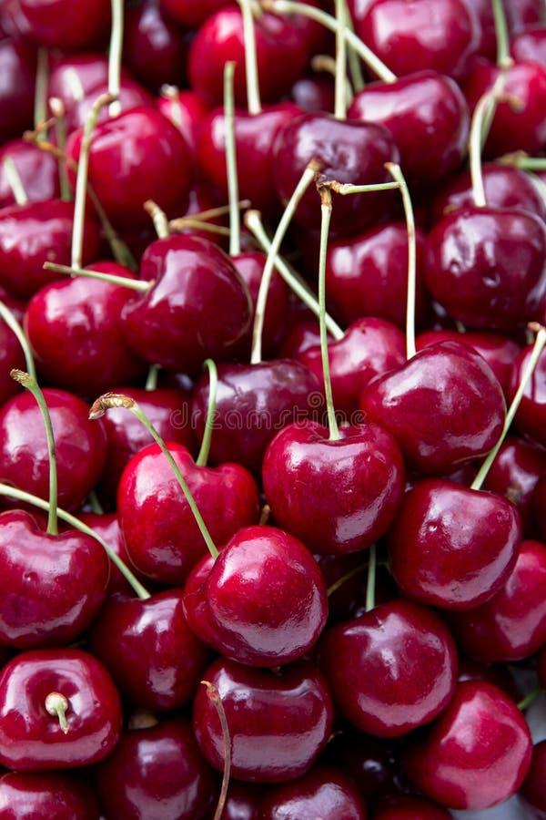 вишни свежие стоковая фотография