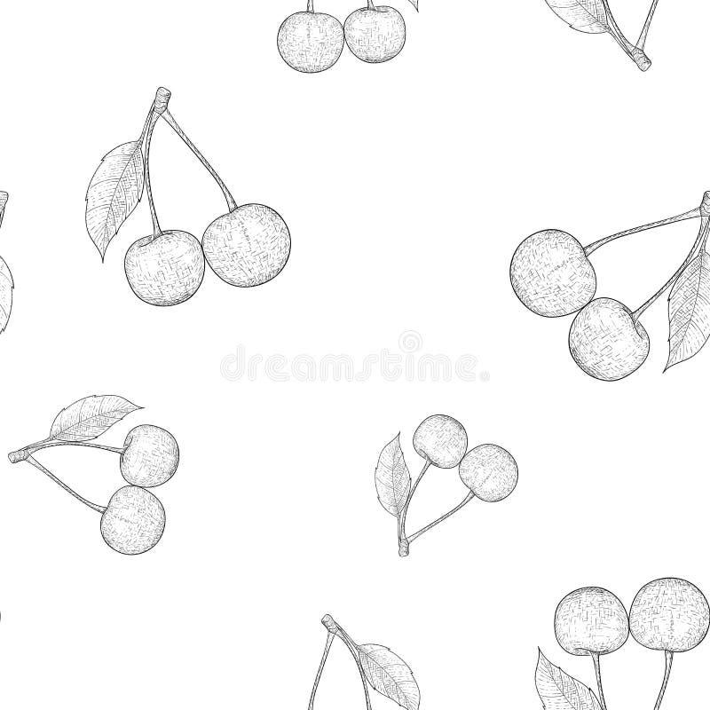 Вишни Эскиз плана нарисованный рукой картина безшовная иллюстрация вектора
