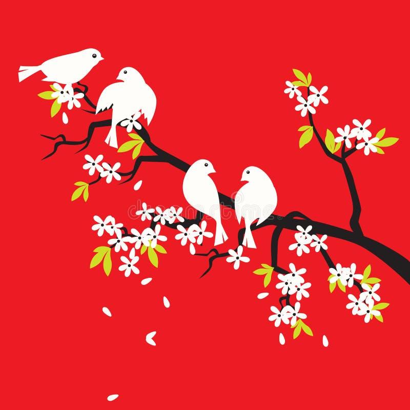 вишня sakura цветения птиц иллюстрация штока