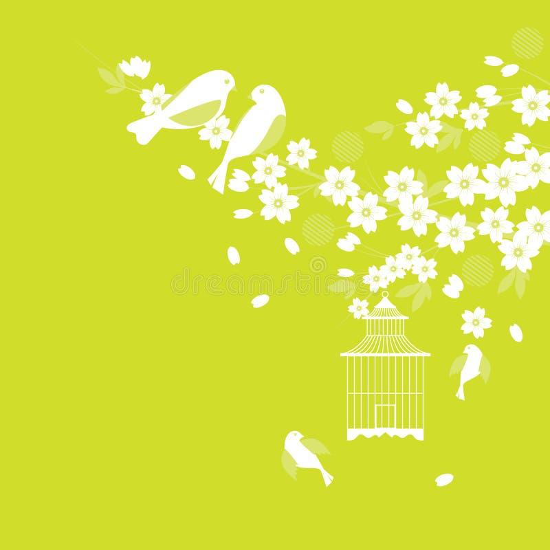 вишня sakura цветения птиц бесплатная иллюстрация