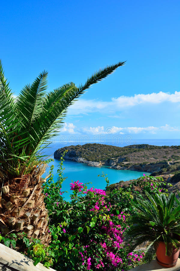 Вид на море от цветка террасы, Греция стоковая фотография rf