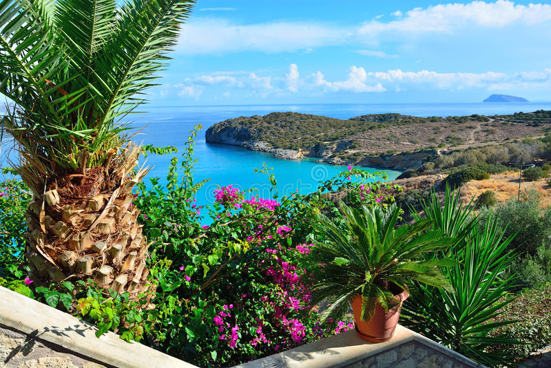 Вид на море от цветка террасы, Греция стоковые изображения rf
